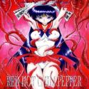 Sailor Moon dj - Red Hot Chili Peppers