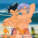 Dragon Ball Z dj - Dangerous Beauty