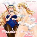 Infinite Stratos dj - Poodle & Bunny Time